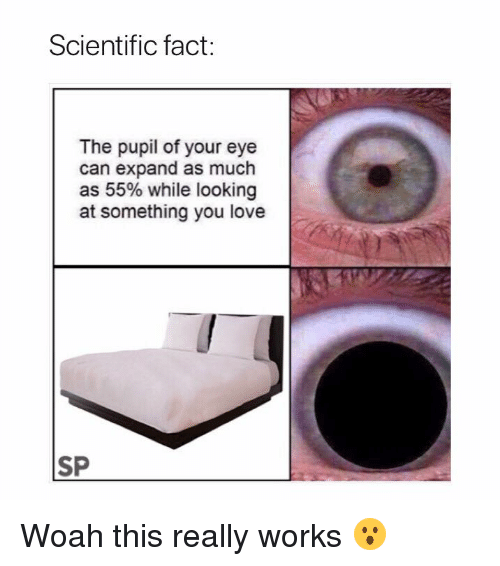 Love, Eye, and Looking: Scientific fact:  The pupil of your eye  can expand as much  as 55% while looking  at something you love  SP Woah this really works 😮