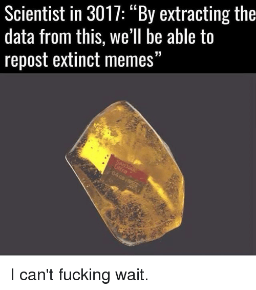 """Fucking, Memes, and 🤖: Scientist in 3017: """"By extracting the  data from this, we'll be able to  repost extinct memes"""" I can't fucking wait."""