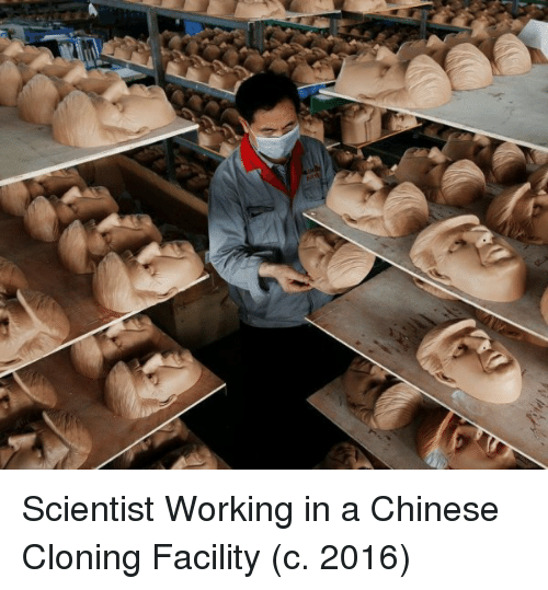 cloning: Scientist Working in a Chinese Cloning Facility (c. 2016)