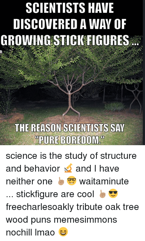 Wood Puns: SCIENTISTS HAVE  DISCOVERED AWAY OF  GROWINGSTICK FIGURES  THE REASON SCIENTISTS SAY  PURE BOREDOM science is the study of structure and behavior 🔬 and I have neither one ☝🏽🤓 waitaminute ... stickfigure are cool ☝🏽️😎 freecharlesoakly tribute oak tree wood puns memesimmons nochill lmao 😆