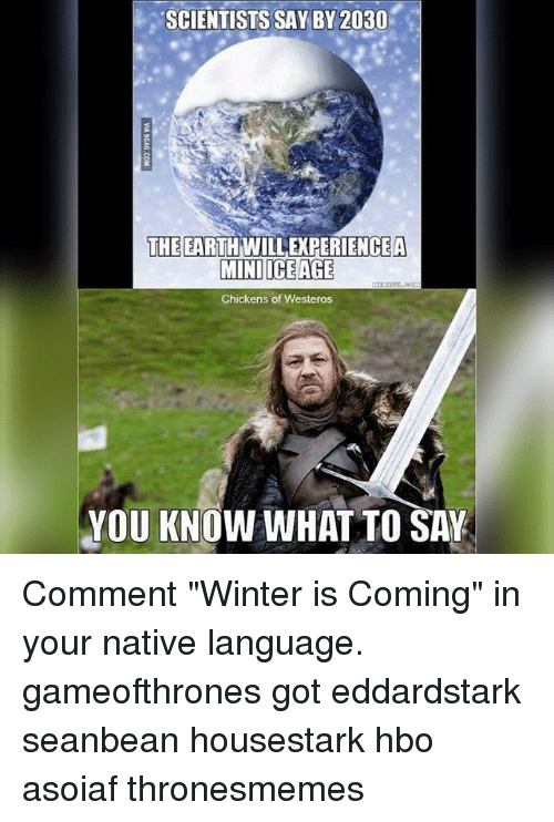 "Hbo, Memes, and Winter: SCIENTISTS SAY BY 2030  THE EARTH WILLEXPERIENCEA  MINI ICE AGE  Chickens of Westeros  YOU KNOW WHAT TO SAY Comment ""Winter is Coming"" in your native language. gameofthrones got eddardstark seanbean housestark hbo asoiaf thronesmemes"