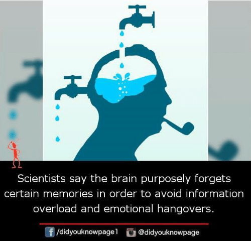Memes, 🤖, and Overload: Scientists say the brain purposely forgets  certain memories in order to avoid information  overload and emotional hangovers  /didyouknowpagel  Cu  @didyouknowpage