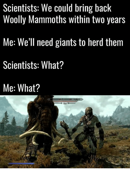 Memes, Back, and 🤖: Scientists: We could bring back  Woolly Mammoths Within two years  Me: We'll need giants to herd them  Scientists: What?  Me: What?