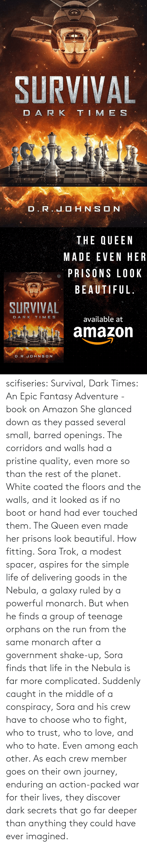 Goes: scifiseries: Survival, Dark Times: An Epic Fantasy Adventure - book on Amazon  She glanced down as they  passed several small, barred openings. The corridors and walls had a  pristine quality, even more so than the rest of the planet. White coated  the floors and the walls, and it looked as if no boot or hand had ever  touched them.  The Queen even made her prisons look beautiful.  How fitting. Sora  Trok, a modest spacer, aspires for the simple life of delivering goods  in the Nebula, a galaxy ruled by a powerful monarch. But when he finds a  group of teenage orphans on the run from the same monarch after a  government shake-up, Sora finds that life in the Nebula is far more complicated.  Suddenly  caught in the middle of a conspiracy, Sora and his crew have to choose  who to fight, who to trust, who to love, and who to hate. Even among each other.  As  each crew member goes on their own journey, enduring an action-packed  war for their lives, they discover dark secrets that go far deeper than  anything they could have ever imagined.