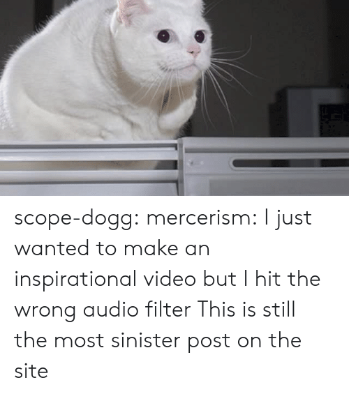 scope: scope-dogg: mercerism:  I just wanted to make an inspirational video but I hit the wrong audio filter   This is still the most sinister post on the site