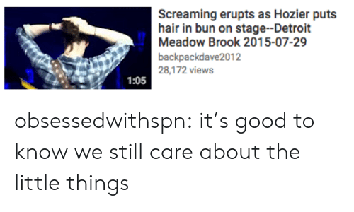 Meadow: Screaming erupts as Hozier puts  hair in bun on stage--Detroit  Meadow Brook 2015-07-29  backpackdave2012  28,172 views  1:05 obsessedwithspn: it's good to know we still care about the little things