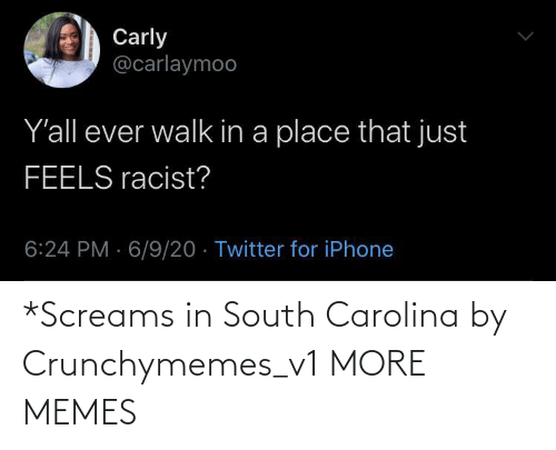 south: *Screams in South Carolina by Crunchymemes_v1 MORE MEMES