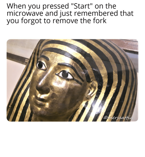 Egyptian: *Screeches in Ancient Egyptian*