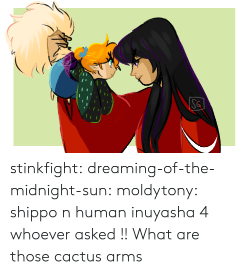 What Are Those: Se stinkfight:  dreaming-of-the-midnight-sun:  moldytony:  shippo n human inuyasha 4 whoever asked !!  What are those cactus arms