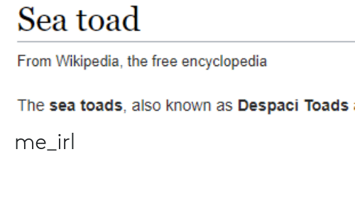 toads: Sea toad  From Wikipedia, the free encyclopedia  The sea toads, also known as Despaci Toads me_irl