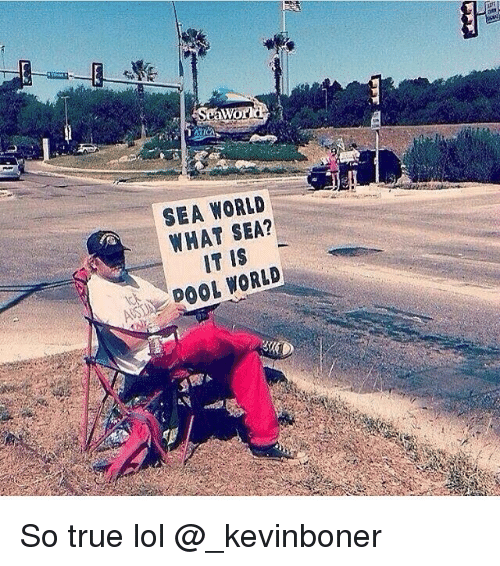 Funny, Lol, and Meme: SEA WORLD  WHAT SEA?  IT IS  ADOOL WORLD So true lol @_kevinboner