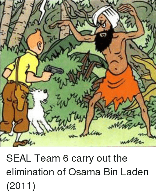 osama: SEAL Team 6 carry out the elimination of Osama Bin Laden (2011)
