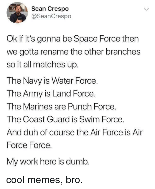 Space Force: Sean Crespo  @SeanCrespo  Ok if it's gonna be Space Force then  we gotta rename the other branches  so it all matches up.  The Navy is Water Force.  The Army is Land Force.  The Marines are Punch Force  The Coast Guard is Swim Force  And duh of course the Air Force is Air  Force Force.  My work here is dumb. cool memes, bro.
