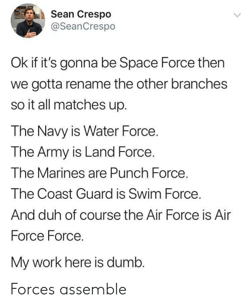 Space Force: Sean Crespo  @SeanCrespo  Ok if it's gonna be Space Force then  we gotta rename the other branches  so it all matches up.  The Navy is Water Force  The Army is Land Force.  Ihe M  The Coast Guard is Swim Force  And duh of course the Air Force is Air  Force Force.  My work here is dumb.  arines are Punch Force Forces assemble