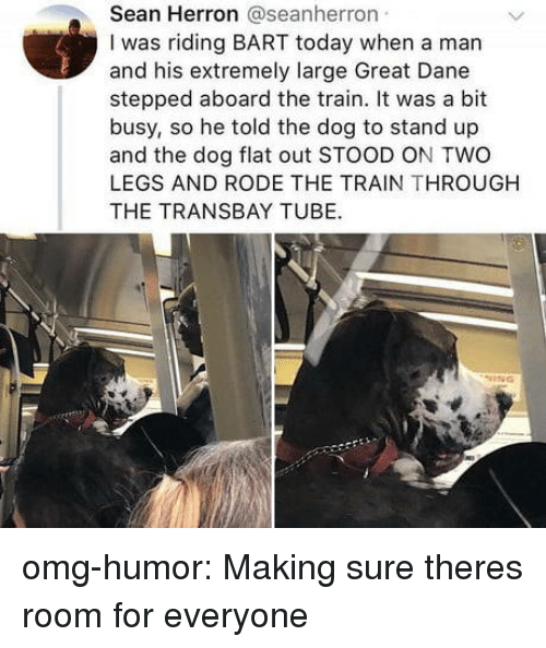 great dane: Sean Herron @seanherron  I was riding BART today when a man  and his extremely large Great Dane  stepped aboard the train. It was a bit  busy, so he told the dog to stand up  and the dog flat out STOOD ON TWO  LEGS AND RODE THE TRAIN THROUGH  THE TRANSBAY TUBE. omg-humor: Making sure theres room for everyone