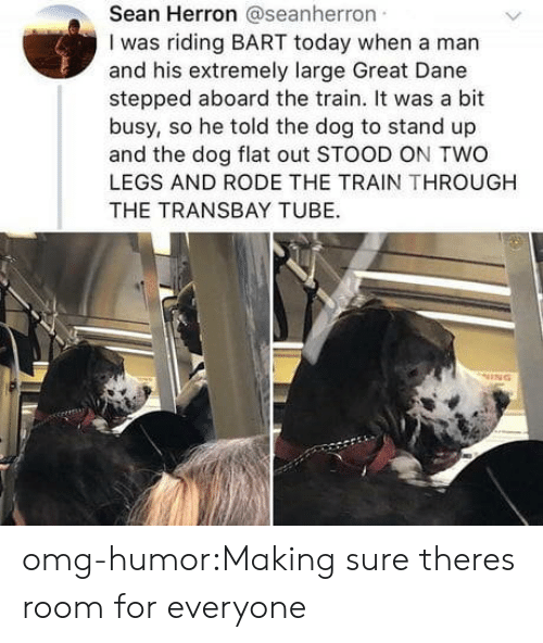 great dane: Sean Herron @seanherron  I was riding BART today when a man  and his extremely large Great Dane  stepped aboard the train. It was a bit  busy, so he told the dog to stand up  and the dog flat out STOOD ON TWO  LEGS AND RODE THE TRAIN THROUGH  THE TRANSBAY TUBE. omg-humor:Making sure theres room for everyone