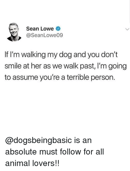 Memes, Animal, and Smile: Sean Lowe  @SeanLowe09  If I'm walking my dog and you don't  smile at her as we walk past, I'm going  to assume you're a terrible person. @dogsbeingbasic is an absolute must follow for all animal lovers!!