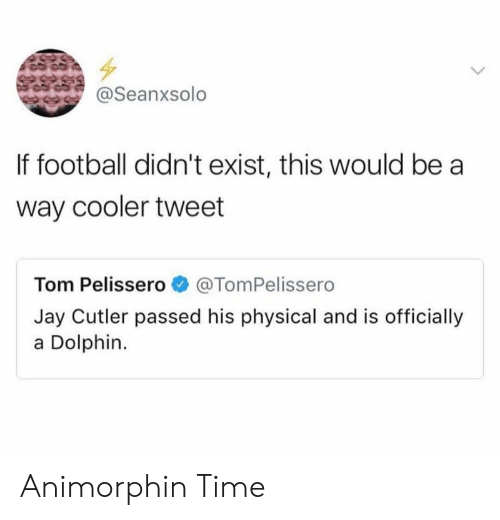 Jay Cutler: Seanxsolo  If football didn't exist, this would be a  way cooler tweet  Tom Pelissero@TomPelissero  Jay Cutler passed his physical and is officially  a Dolphin. Animorphin Time