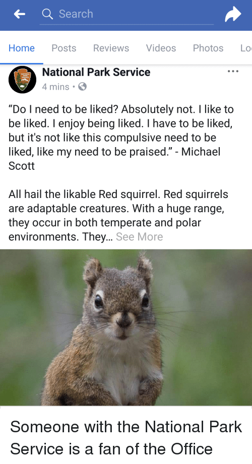 """Michael Scott: Search  Home Posts Reviews Videos Photos Lo  National Park Service  4 mins S  SERVICE  """"Do I need to be liked? Absolutely not. I like to  be liked. I enjoy being liked. I have to be liked,  but it's not like this compulsive need to be  liked, like my need to be praised."""" - Michael  Scott  All hail the likable Red squirrel. Red squirrels  are adaptable creatures. With a huge range,  they occur in both temperate and polar  environments. They... See More Someone with the National Park Service is a fan of the Office"""