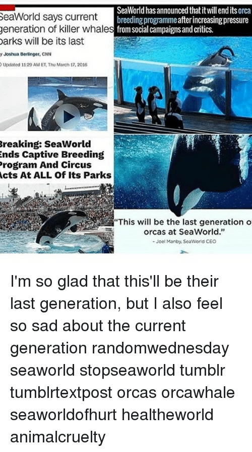 """cnn.com, Memes, and Orcas: SeaWorld has announced thatitwillendits orca  SeaWorld says current  breeding programmeafterincreasingpressure  generation of killer whale  s from social campaigns and critics.  Darks will be its last  y Joshua Berlinger, CNN  Updated 11:29 AM ET Thu March 17, 2016  Breaking: SeaWorld  ends Captive Breeding  Program And Circus  Acts At ALL Of Its Parks  orcas at SeaWorld.""""  Joel Manby, SeaWorld CEO I'm so glad that this'll be their last generation, but I also feel so sad about the current generation randomwednesday seaworld stopseaworld tumblr tumblrtextpost orcas orcawhale seaworldofhurt healtheworld animalcruelty"""