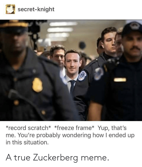 Record Scratch: secret-knight  *record scratch* *freeze frame Yup, that's  me. You're probably wondering how l ended up  in this situation. A true Zuckerberg meme.