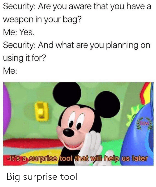 Tool: Security: Are you aware that you have a  weapon in your bag?  Me: Yes.  Security: And what are you planning on  using it for?  Me:  IIM  lt's a surprise tool that will help us later Big surprise tool