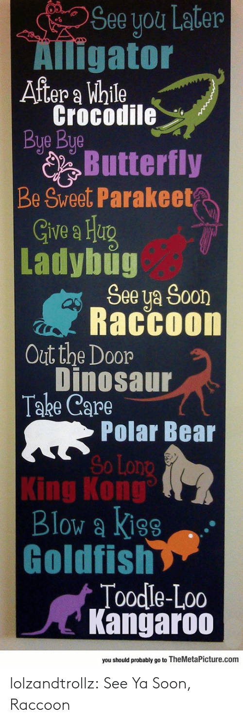 Butterfly: See you Later  Alligator  After a While  Crocodile  Bye Bye  Butterfly  Be Sweet Parakeet  Give a Heg  Ladybug  See ya Soon  Raccoon  Out the Door  Dinosaur  Take Care  Polar Bear  So Long  King Kong  Blow a Kiss  Goldfish  Toodle-Loo  Kangaroo  you should probably go to TheMetaPicture.com lolzandtrollz:  See Ya Soon, Raccoon