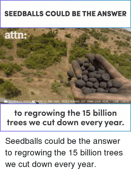 "Memes, Time, and Trees: SEEDBALLS COULD BE THE ANSWER  attn:  SEEDBALLS..KENYAM ""HERE'S HOW MANY TREES HUMANS CUT DOWN EACH YEAR,"" TIME (2015)  to regrowing the 15 billion  trees we cut down every year. Seedballs could be the answer to regrowing the 15 billion trees we cut down every year."