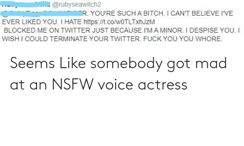 actress: Seems Like somebody got mad at an NSFW voice actress
