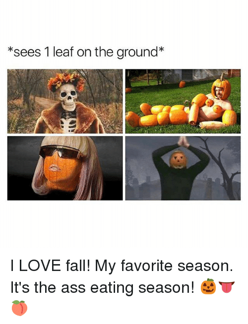 Ass, Ass Eating, and Fall: *sees 1 leaf on the ground* I LOVE fall! My favorite season. It's the ass eating season! 🎃👅🍑