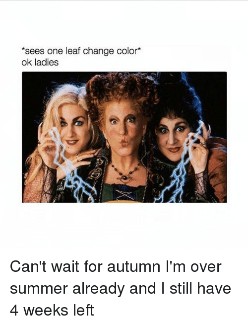 Memes, Summer, and Change: *sees one leaf change color*  ok ladies Can't wait for autumn I'm over summer already and I still have 4 weeks left