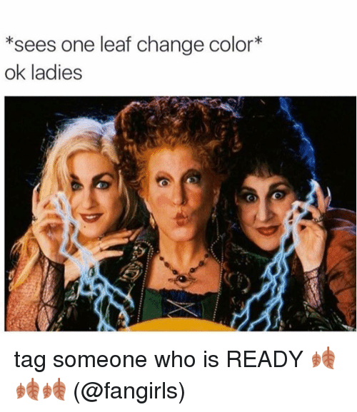Tag Someone Who Is: *sees one leaf change color*  ok ladies tag someone who is READY 🍂🍂🍂 (@fangirls)