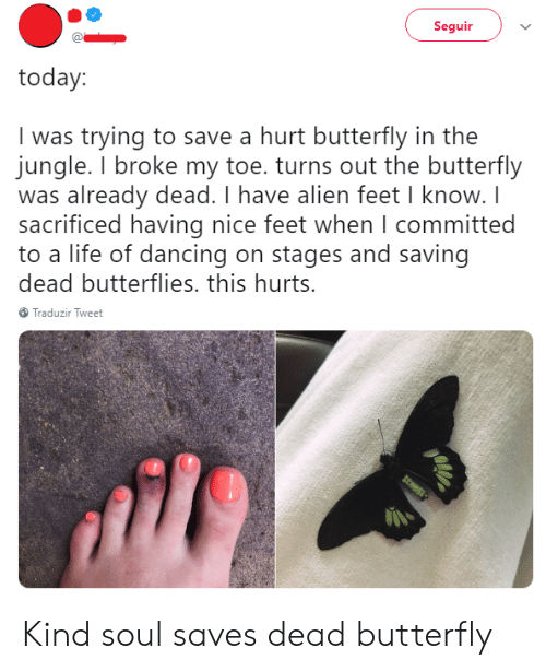 Nice Feet: Seguir  today:  I was trying to save a hurt butterfly in the  jungle. I broke my toe. turns out the butterfly  was already dead. I have alien feet I know. I  sacrificed having nice feet when I committed  to a life of dancing on stages and saving  dead butterflies. this hurts.  Traduzir Tweet Kind soul saves dead butterfly
