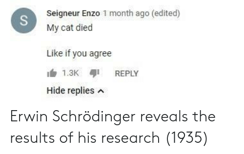erwin: Seigneur Enzo 1 month ago (edited)  My cat died  Like if you agree  REPLY  Hide replies n Erwin Schrödinger reveals the results of his research (1935)