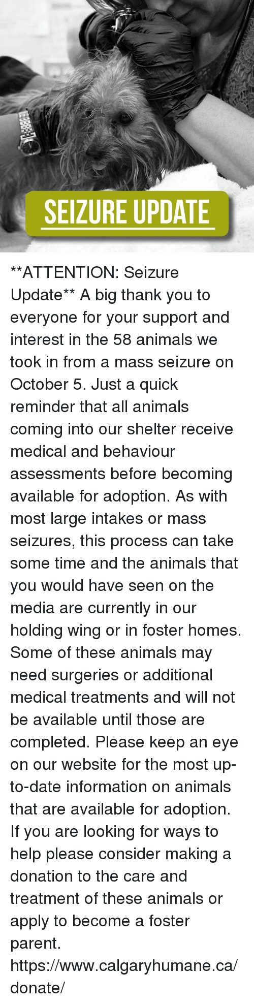 Animals, Memes, and Thank You: SEIZURE UPDATE **ATTENTION: Seizure Update**   A big thank you to everyone for your support and interest in the 58 animals we took in from a mass seizure on October 5.   Just a quick reminder that all animals coming into our shelter receive medical and behaviour assessments before becoming available for adoption. As with most large intakes or mass seizures, this process can take some time and the animals that you would have seen on the media are currently in our holding wing or in foster homes. Some of these animals may need surgeries or additional medical treatments and will not be available until those are completed. Please keep an eye on our website for the most up-to-date information on animals that are available for adoption.   If you are looking for ways to help please consider making a donation to the care and treatment of these animals or apply to become a foster parent. https://www.calgaryhumane.ca/donate/