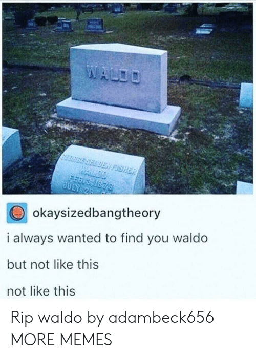 fisher: SELDEN FISHER  WALDO  1876  JULY 24  okaysizedbangtheory  i always wanted to find you waldo  but not like this  not like this Rip waldo by adambeck656 MORE MEMES