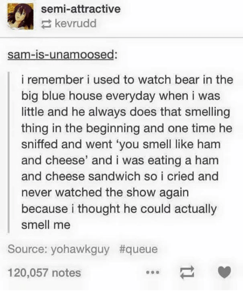Big Blue: semi-attractive  kevrudd  sama-is-unamoosed:  i remember i used to watch bear in the  big blue house everyday when i was  little and he always does that smelling  thing in the beginning and one time he  sniffed and went 'you smell like ham  and cheese' and i was eating a ham  and cheese sandwich so i cried and  never watched the show again  because i thought he could actually  smell me  Source: yohawkguy t queue  120,057 notes