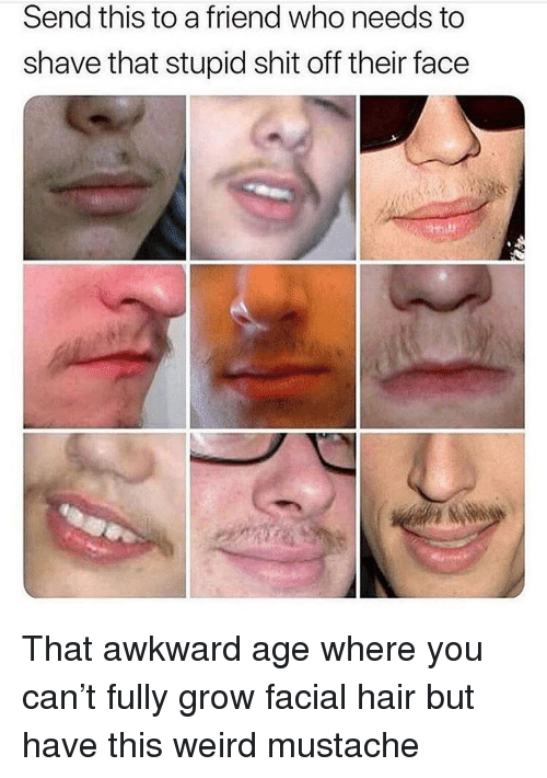 Memes, Shit, and Weird: Send this to a friend who needs to  shave that stupid shit off their face That awkward age where you can't fully grow facial hair but have this weird mustache