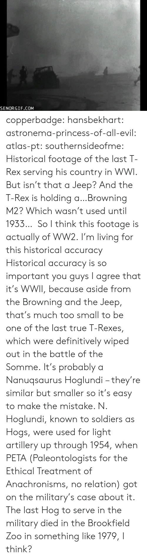 brookfield: SENORGIF.COM copperbadge:  hansbekhart:  astronema-princess-of-all-evil:  atlas-pt:  southernsideofme:  Historical footage of the last T-Rex serving his country in WWl.  But isn't that a Jeep? And the T-Rex is holding a…Browning M2? Which wasn't used until 1933… So I think this footage is actually of WW2.  I'm living for this historical accuracy  Historical accuracy is so important you guys   I agree that it's WWII, because aside from the Browning and the Jeep, that's much too small to be one of the last true T-Rexes, which were definitively wiped out in the battle of the Somme.It's probably a Nanuqsaurus Hoglundi– they're similar but smaller so it's easy to make the mistake. N. Hoglundi, known to soldiers as Hogs, were used for light artillery up through 1954, when PETA (Paleontologists for the Ethical Treatment of Anachronisms, no relation) got on the military's case about it. The last Hog to serve in the military died in the Brookfield Zoo in something like 1979, I think?