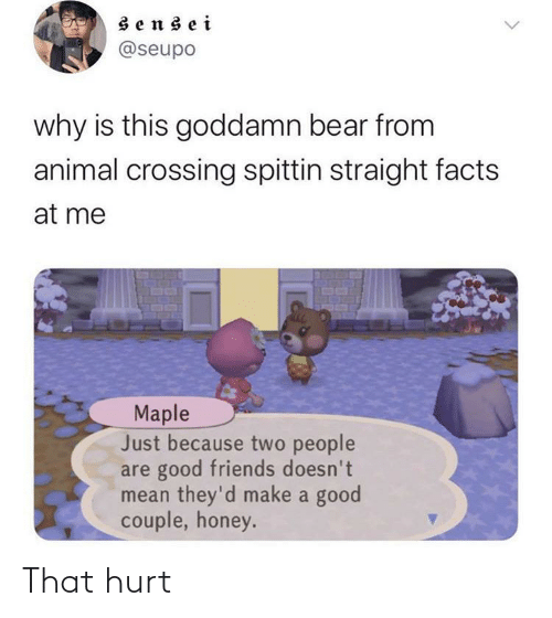 two people: sensei  @seupo  why is this goddamn bear from  animal crossing spittin straight facts  at me  Maple  Just because two people  are good friends doesn't  mean they'd make a good  couple, honey. That hurt