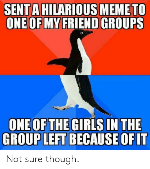 hilarious meme: SENT A HILARIOUS MEME TO  ONE OF MY FRIEND GROUPS  ONE OFTHEGIRLS INTHE  GROUP LEFT BECAUSE OF IT Not sure though.