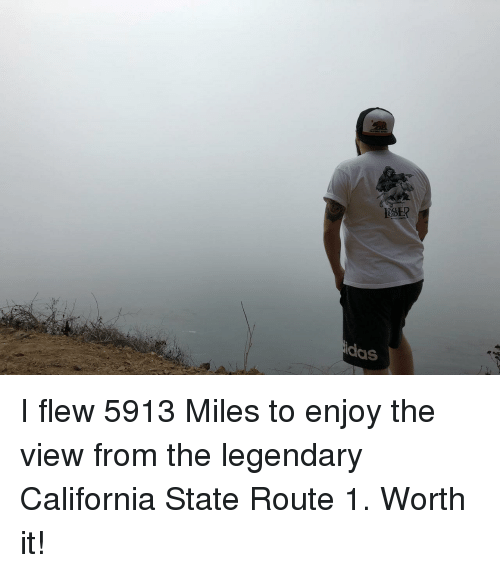 The View: SER  idas I flew 5913 Miles to enjoy the view from the legendary California State Route 1. Worth it!