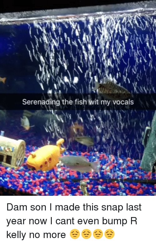 dam son: Serenading the fish wit my vocals Dam son I made this snap last year now I cant even bump R kelly no more 😔😔😔😔
