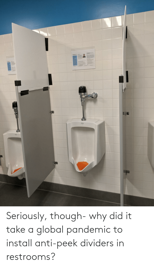 seriously: Seriously, though- why did it take a global pandemic to install anti-peek dividers in restrooms?