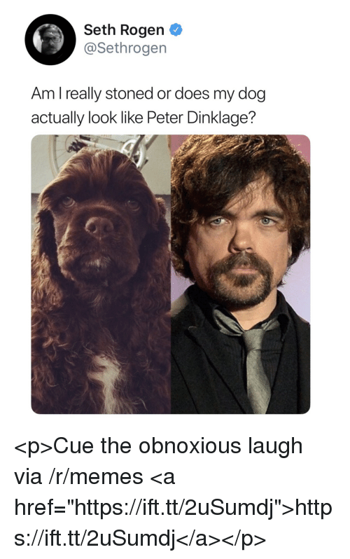 """Memes, Seth Rogen, and Peter Dinklage: Seth Rogen  @Sethrogen  Am l really stoned or does my dog  actually look like Peter Dinklage? <p>Cue the obnoxious laugh via /r/memes <a href=""""https://ift.tt/2uSumdj"""">https://ift.tt/2uSumdj</a></p>"""