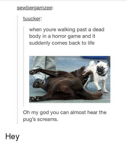 horror: sewbergamzee  tuucker:  when youre walking past a dead  body in a horror game and it  suddenly comes back to life  Oh my god you can almost hear the  pug's screams. Hey