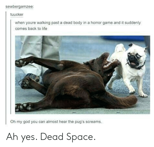 dead body: sewbergamzee  tuucker  when youre walking past a dead body in a horror game and it suddenly  comes back to life  Oh my god you can almost hear the pug's screams. Ah yes. Dead Space.