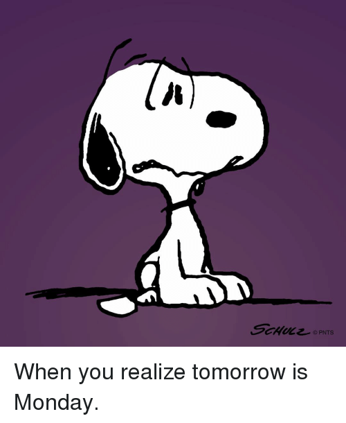 Tomorrow Is Monday: sewe么已  © PNTS When you realize tomorrow is Monday.