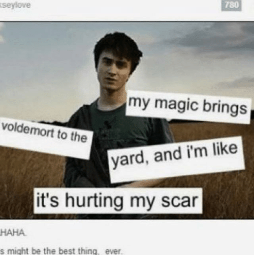 voldemort: seylove  780  my magic brings  voldemort to the  yard, and i'm like  it's hurting my scar  HAHA  s might be the best thing, ever