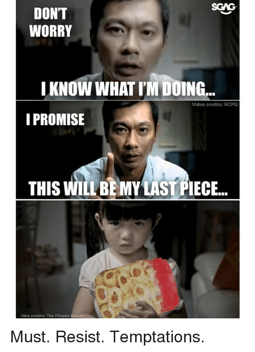 Memes, Video, and Fitness: SGAG  DON'T  WORRY  IKNOW WHAT I'M DOING...  Video credits: NCPG  I PROMISE  THIS WILL BE MY LAST PIECE..  Idea credits: The  Fitness Grocer Must. Resist. Temptations.